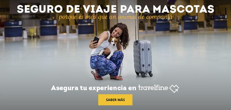 seguro viaje mascotas